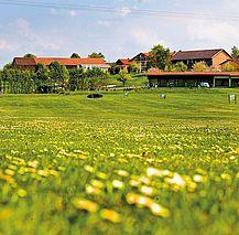 Berchtesgadener Land, Blumenwiese